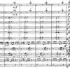 """Migraine headache leitmotif"" in Siegfried, Act 1, Scene 1. PETRUCCI INTERNATIONAL MUSIC SCORE LIBRARY PROJECT"